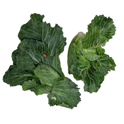 Cabbage Shoot.png