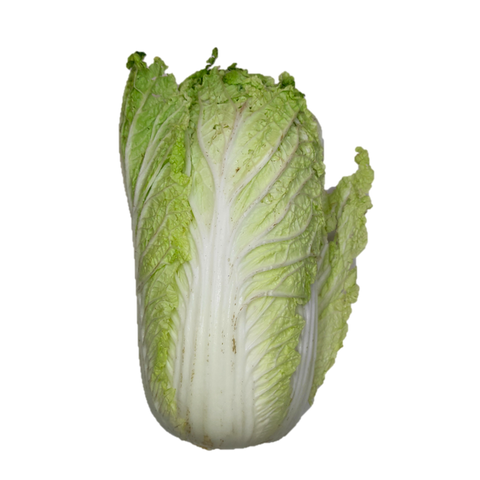Chinese Cabbage.png