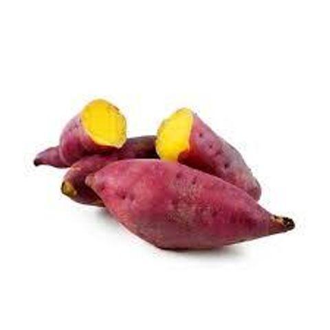 Sweet Potato Yellow.jpg