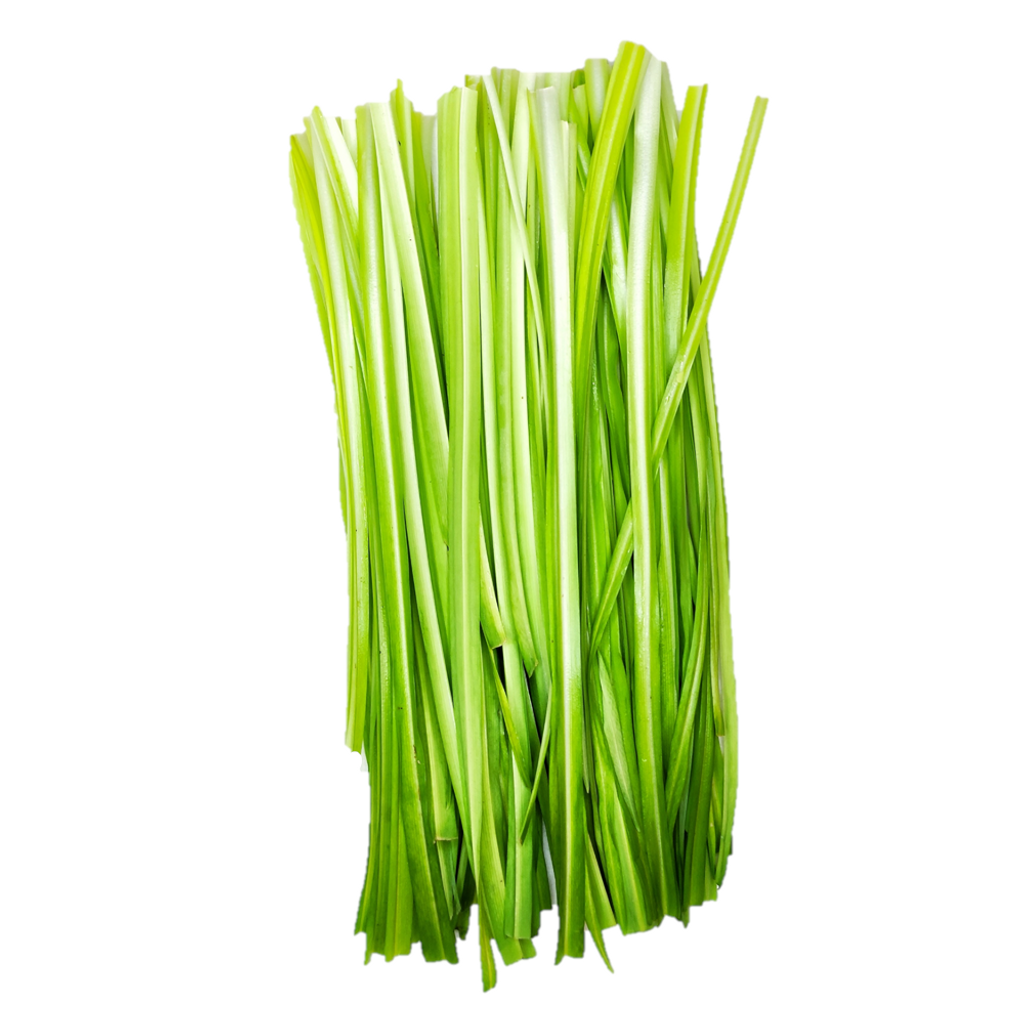 Chive.png