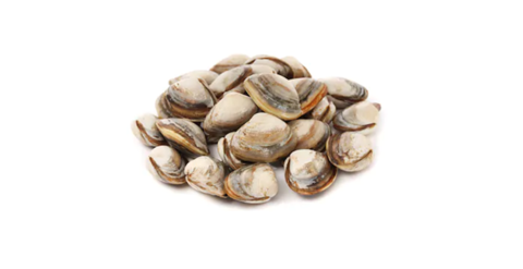 Boiled Clams.png