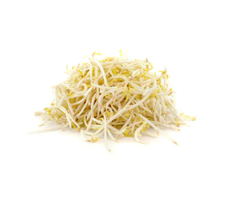 Beansprout.png
