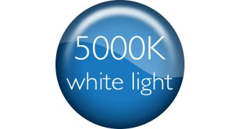 DiamondVision lights up your car with 5000K white light