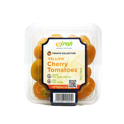 efresh BT Products (13).png