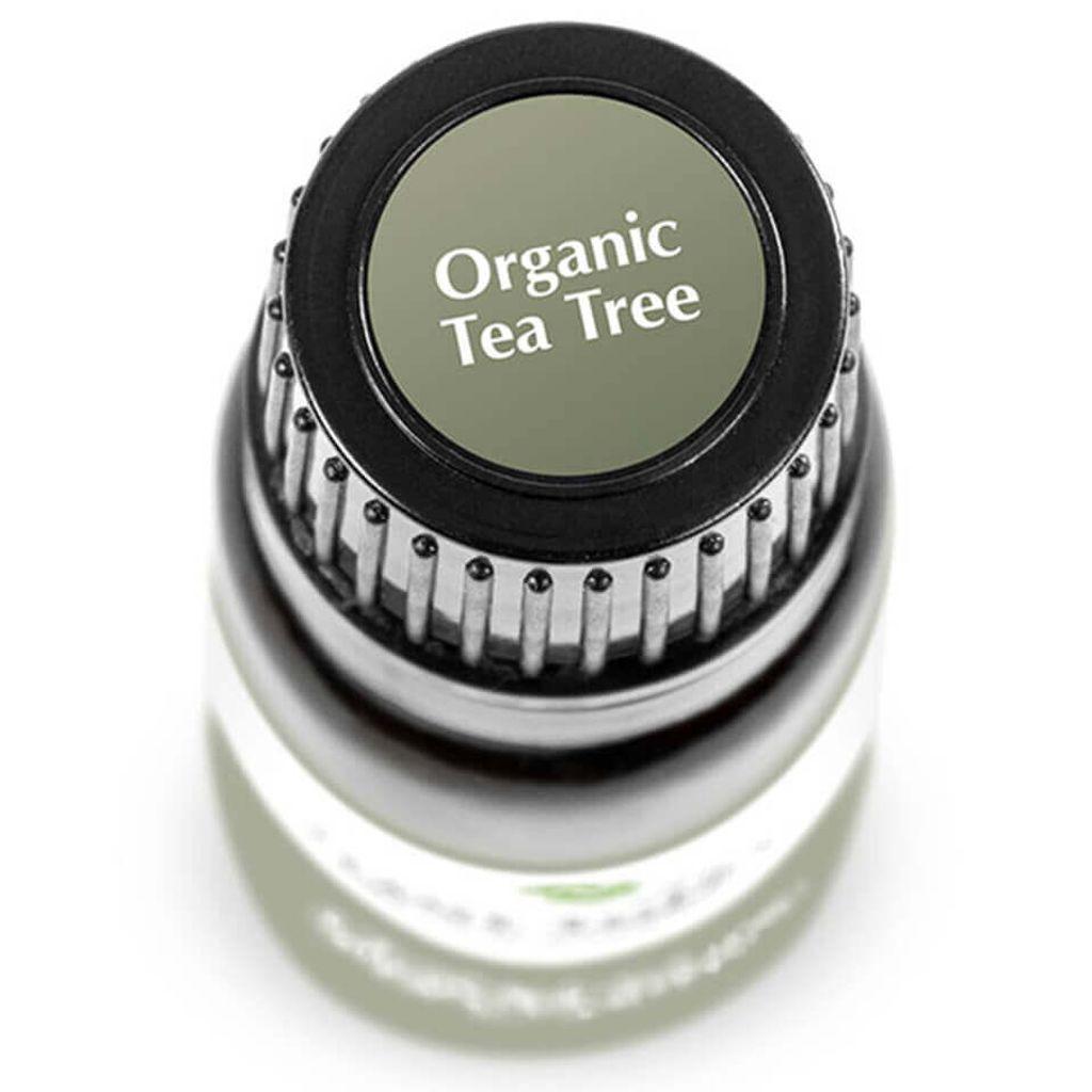 Plant Therapy - Tea Tree Kids Safe Organic (10ml) 03.jpg