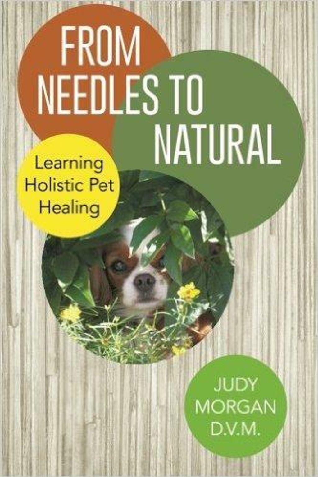 Dr Judy Morgan From Needles to Natural 01.jpg