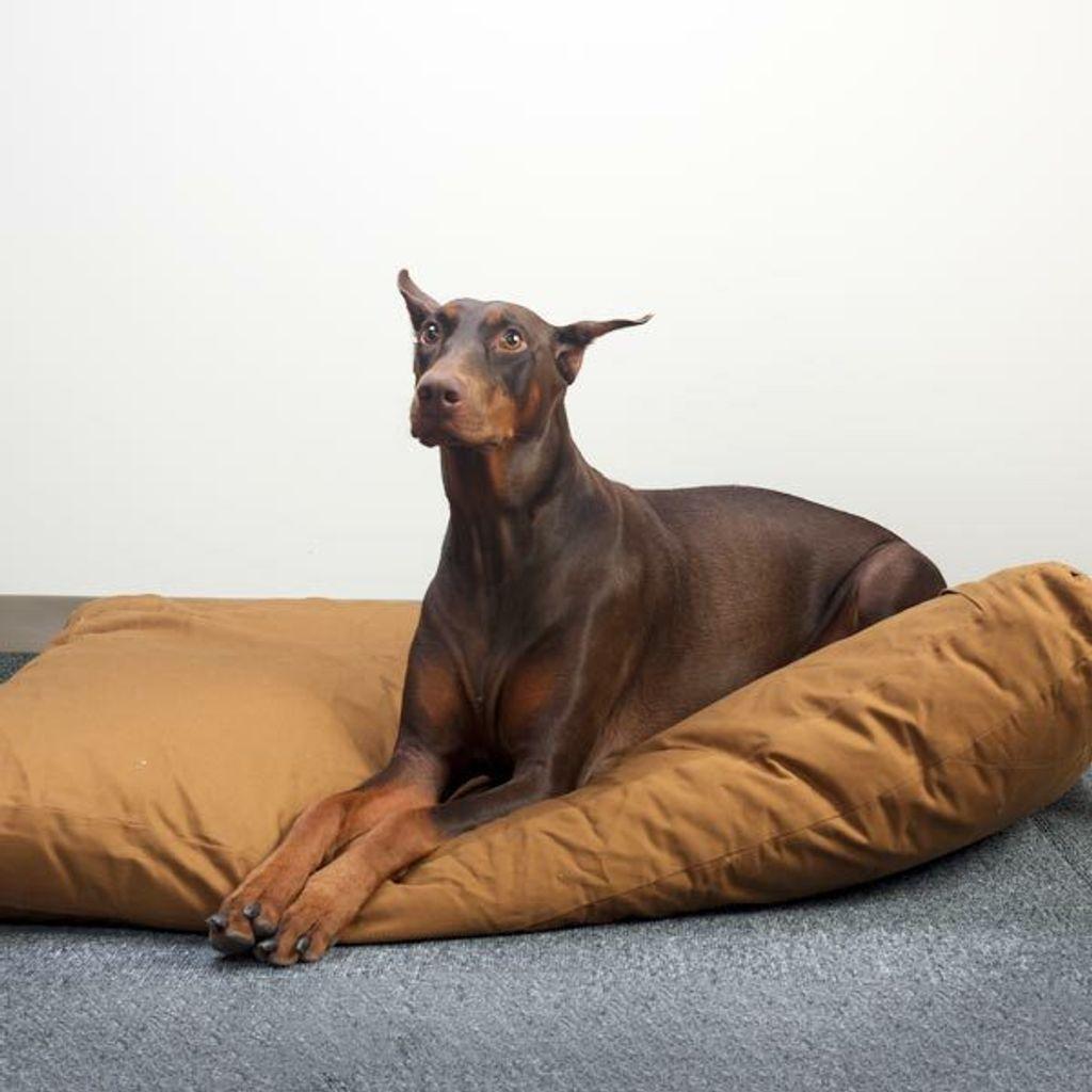 extra large premium pet bed 01.jpg