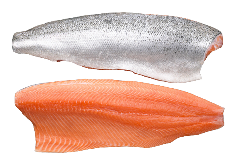 SALMON-removebg-preview.png