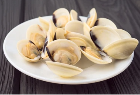 White Clam 3.PNG