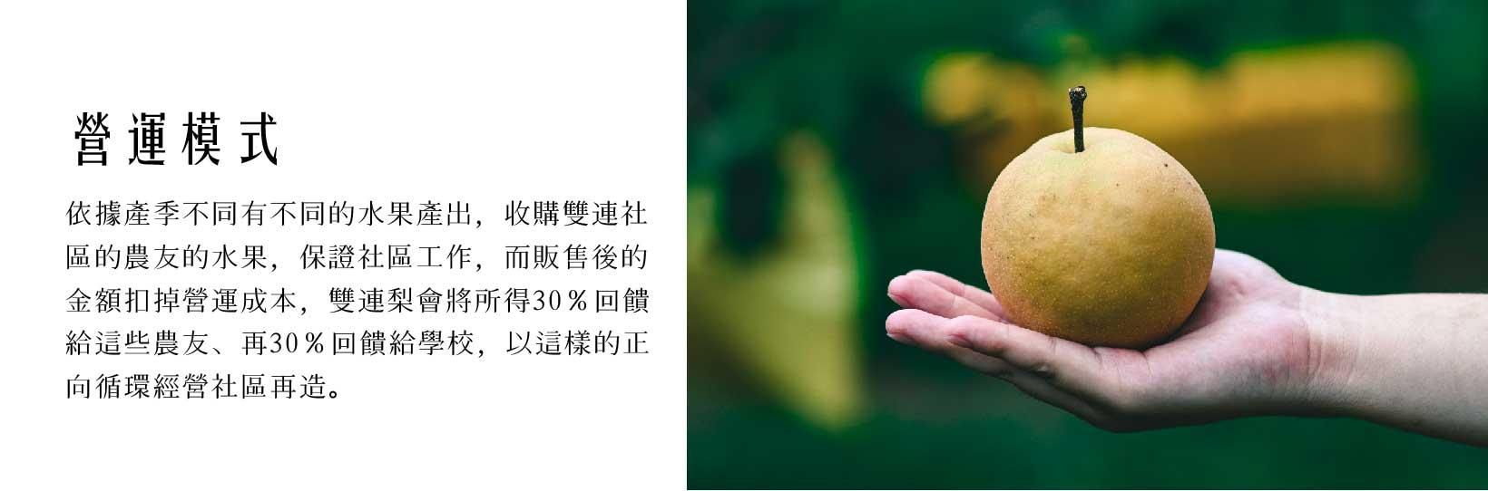 卓蘭新興水梨-手捧著梨子-說明社會企業營運模式 (2).jpg
