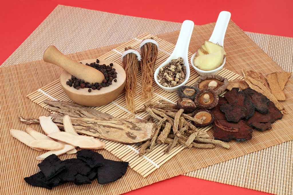 What is Traditional Chinese Medicine (TCM)?