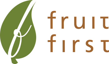 Fruit First: Dried Fruit 100% Made in Malaysia