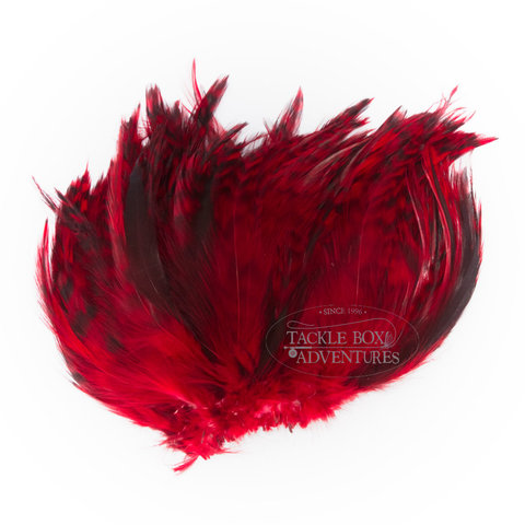 wapsi_barred_strung_neck_hackle_red_nhb056.jpg