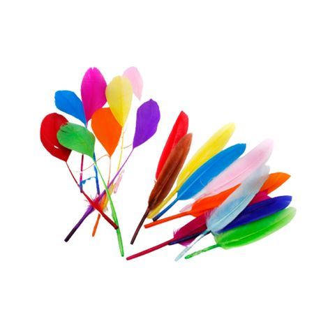 Craft DIY Colourful Feather (Wings & Round Contour),,.jpg