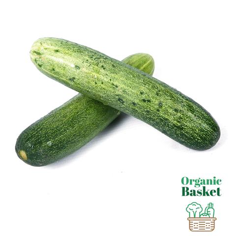 Long cucumber@2x.png