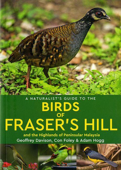 Birds-of-Frasers-Hill.jpg