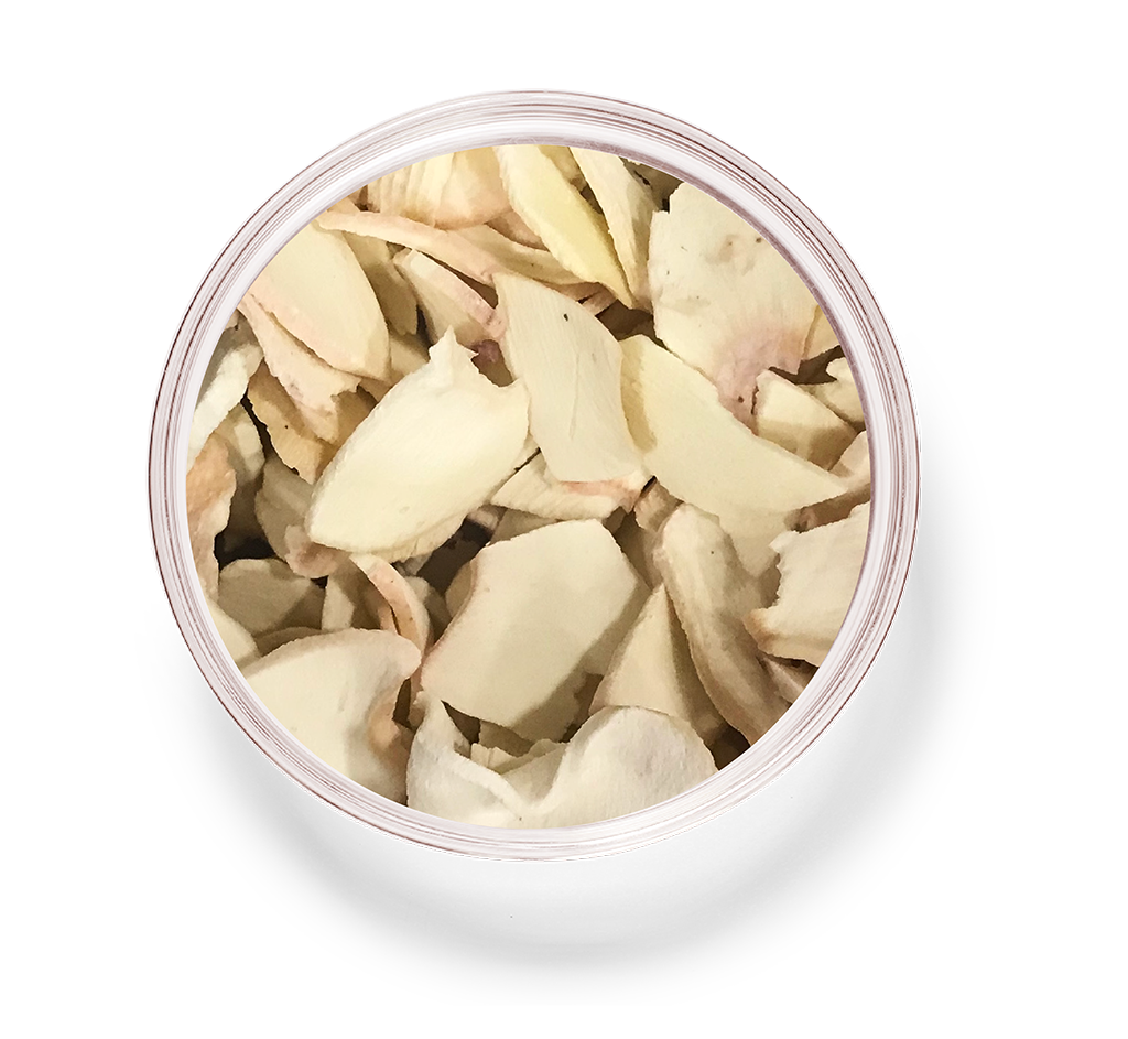 Dried Radishes_4_cuttlefish.png