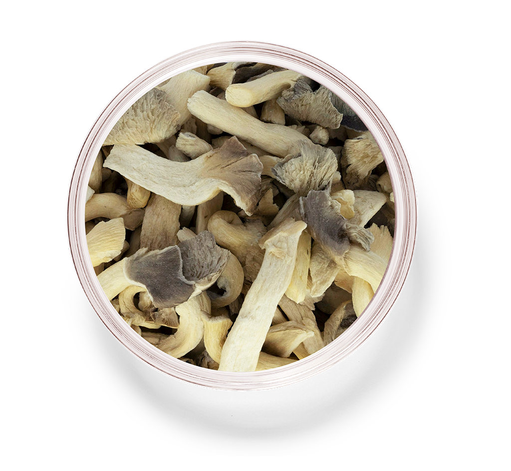 Dried Radishes_8_oyster mushroom.png