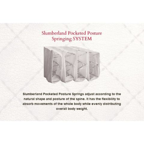 POCKETED-600x600