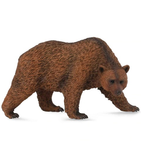 Brown Bear.jpeg