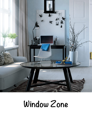 Window Zone.jpg