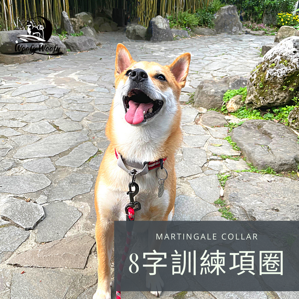 Martingale collar-紅-圓仔.png