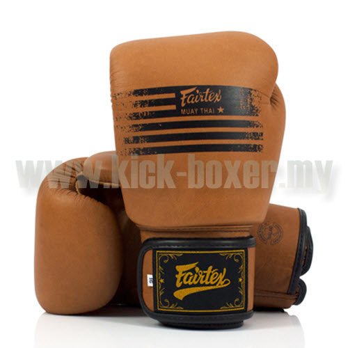 FAIRTEX_BGV21_Legacy-BOX-W.jpg