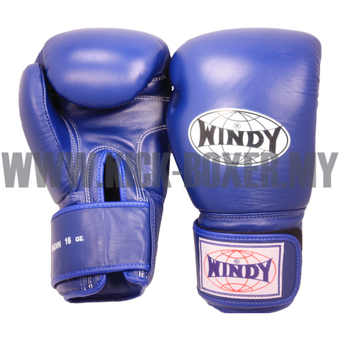 WINDY_Boxing-Gloves_Blue.jpg
