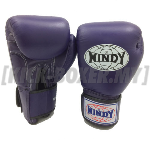 WINDY_Boxing-Glove_1.jpg