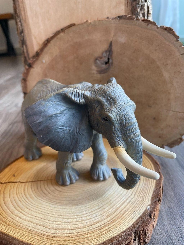 African Elephant.jpeg