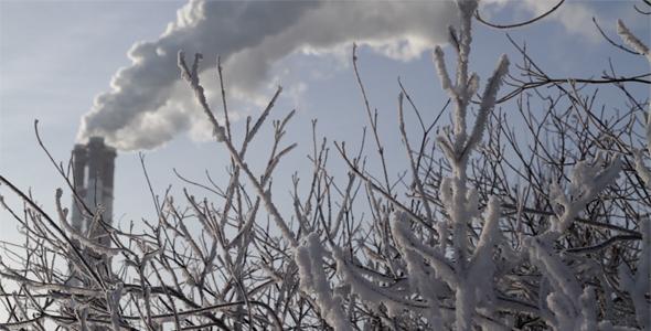 carbon emission.jpg