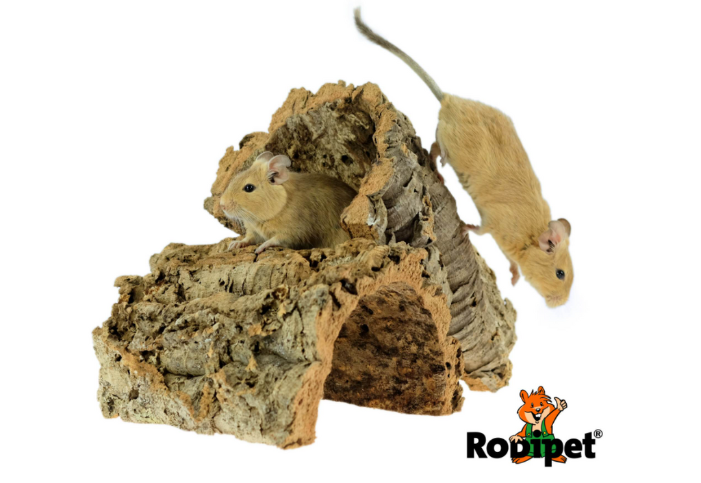 Rodipet® Cork Tunnel size M – ca 20 cm long and 8-12 cm in Diameter -3.png