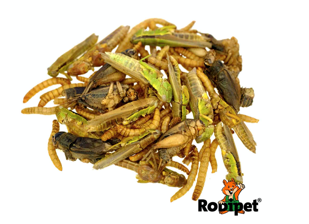 Rodipet® Insect Mix Protein Snack 50 g -4.png