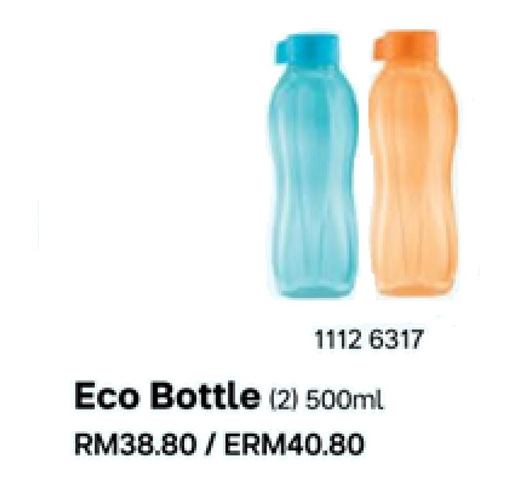 eco500bo.png