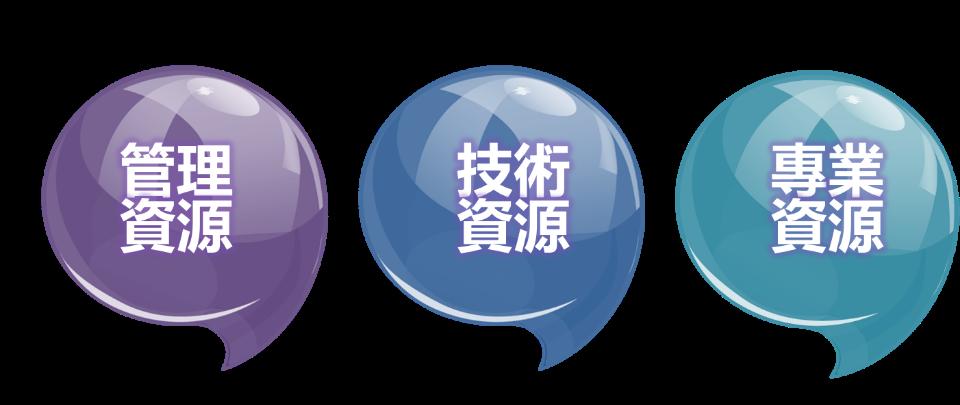 金豐企業大學架構.png