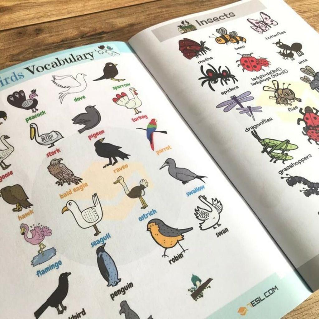 500 Vocabulary-7.jpg
