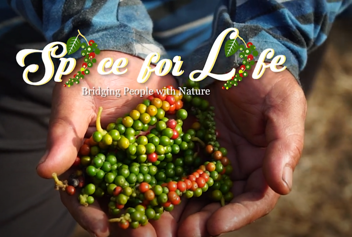 Spice For Life Bridging People with Natura