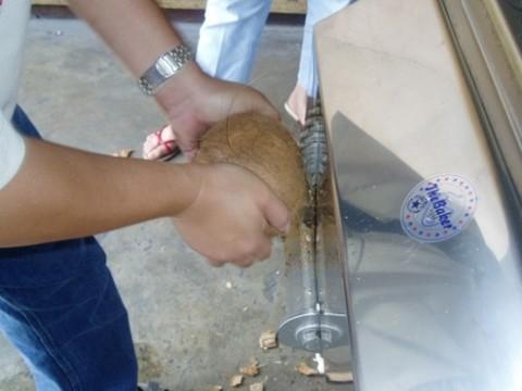2-Coconut Husk Remover CHR1.jpg