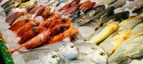 Fresh-Fish-Display_750x339.jpg