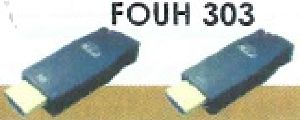 FOUH 303.png