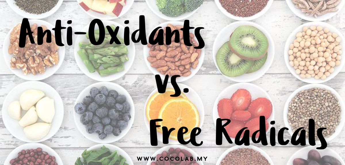 A Look into the Anti-Oxidants VS. Free Radicals Battle