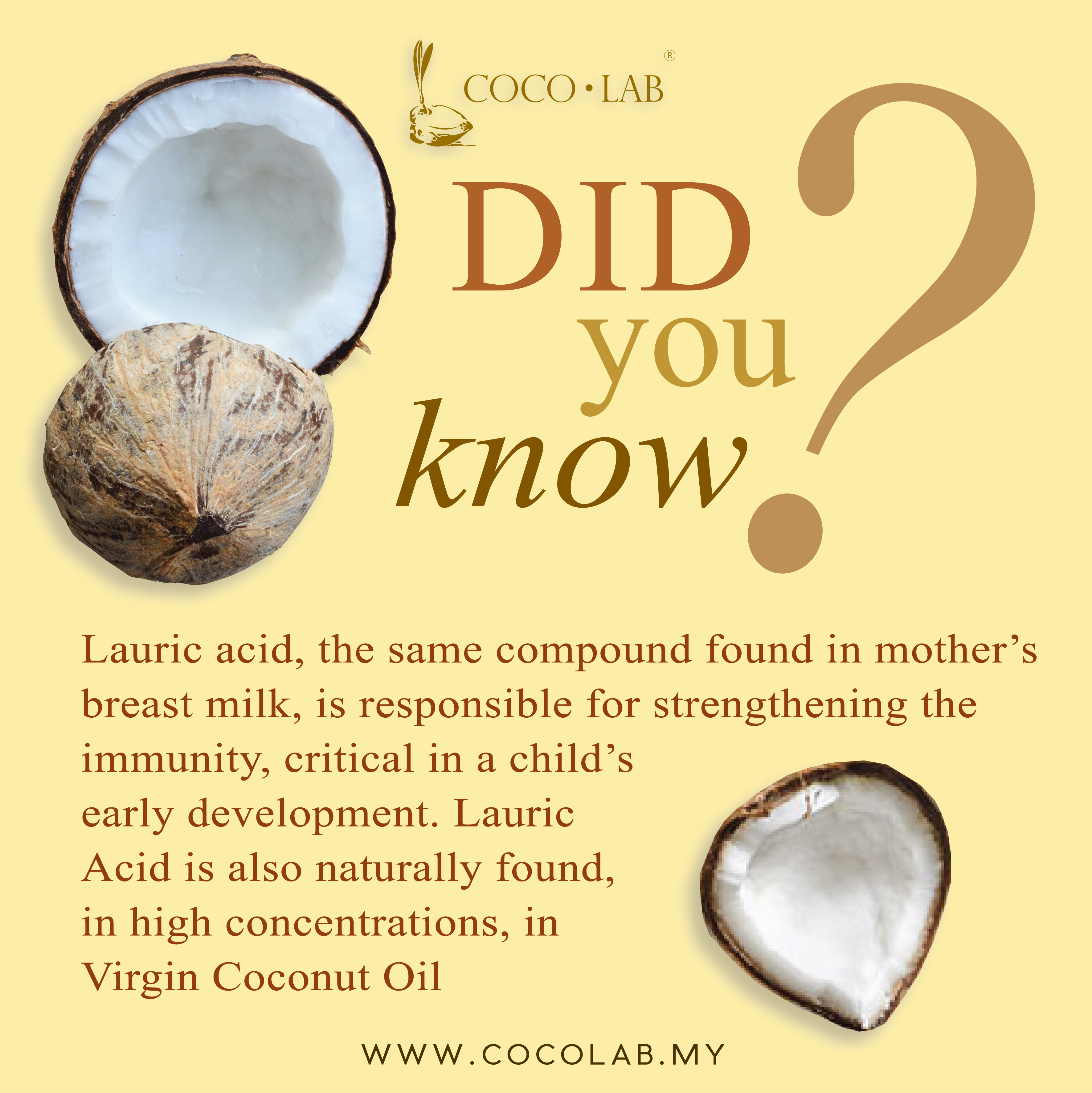 COCOLAB - DID YOU KNOW -Virgin Coconut Oil Lauric Acid