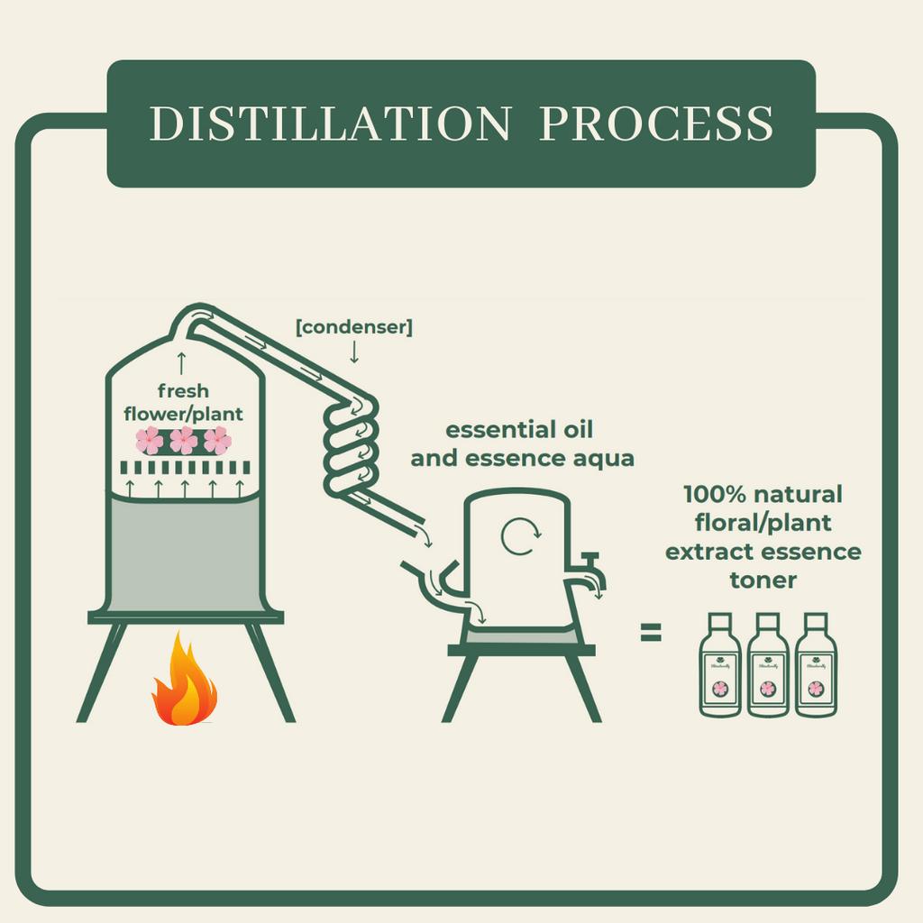 toner-distillation process.png