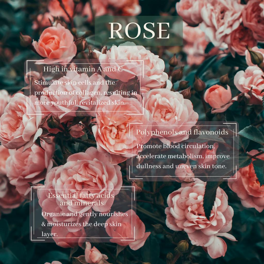 toner raw mat - rose.png