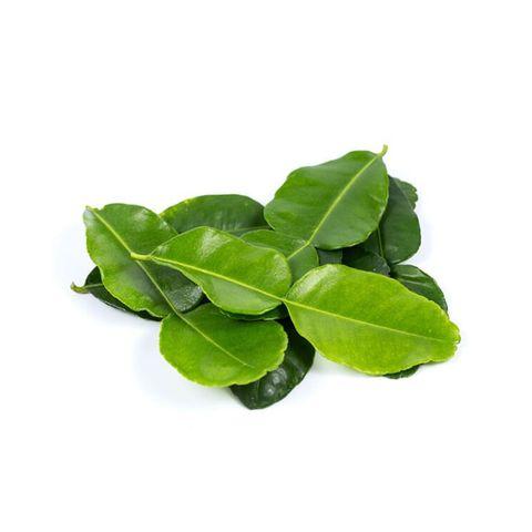 Herb Kaffir Lime Leaf 麻疯柑叶.jpg