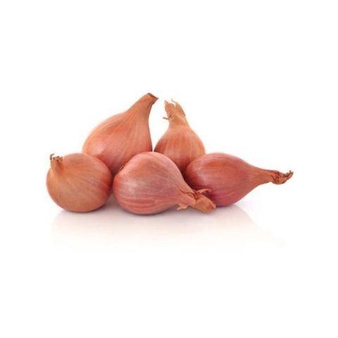 Onion Shallot 小红葱.jpg