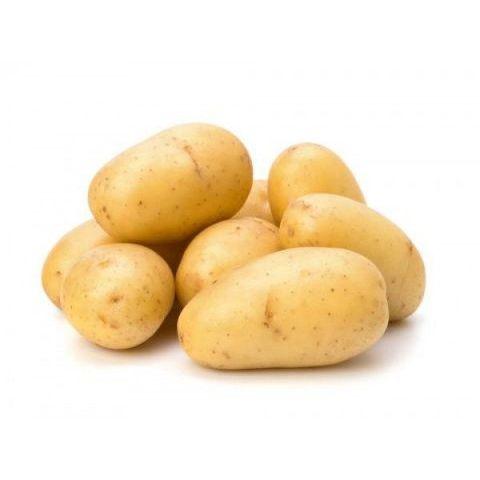 Potato China 中国土豆.jpg