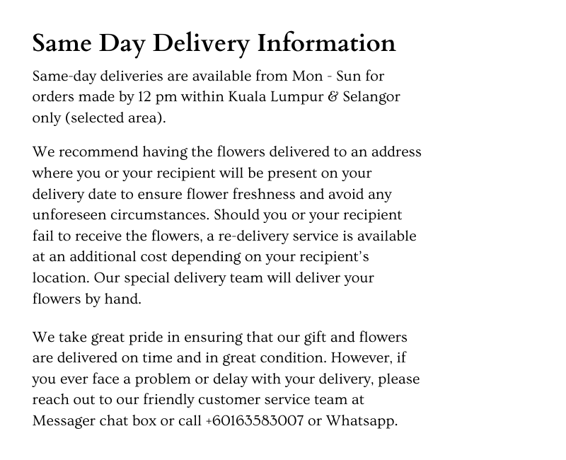 Same Day Delivery Information.png