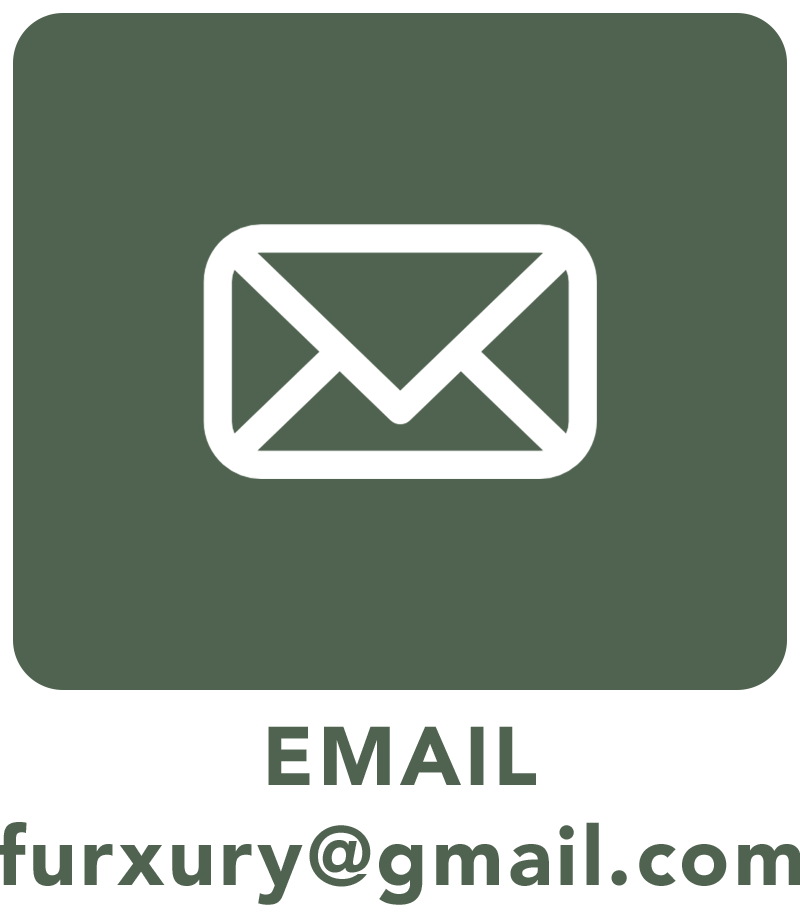 contact-email.png