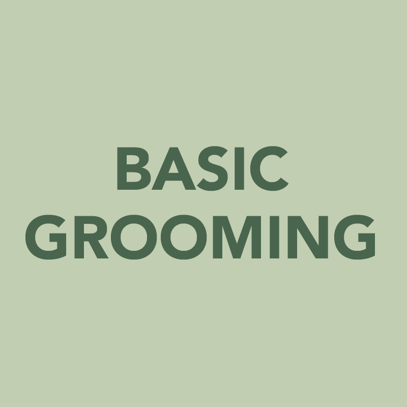 basicgrooming.png